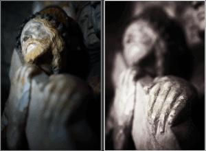 Figure-1-©ericheymans-300x220