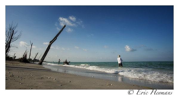 Carl Zeiss 18mm f/3.5 (recadré en 4/2) - Floride - Eric Heymans