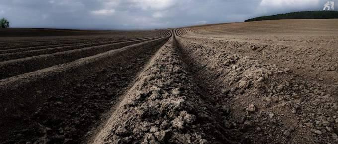 Photographie de paysage au grand-angle d'un champ labouré très structuré